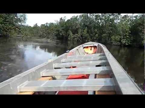 A Mahury folyó - Francia Guyana