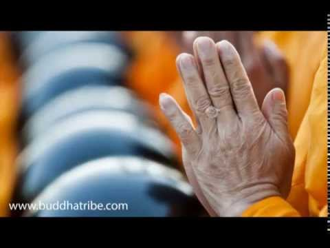 Buddha Music: Meditation Music Sleep and Relaxation to Learn Meditation