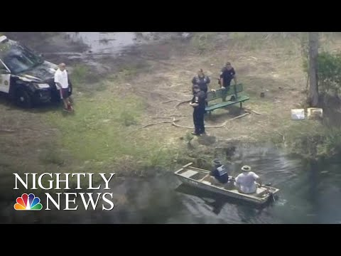 Woman Missing After Florida Alligator Attack | NBC Nightly News