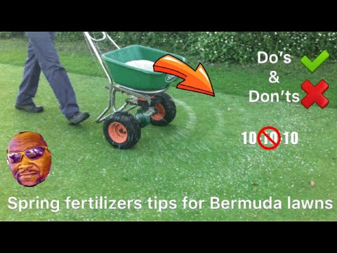 Spring Fertilizers tips for Bermuda Lawns