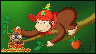 Coco der Neugierige Affe 🐵 Ausflug der Sprossen 🐵 Cartoons für Kinder🐵 Coco der Affe Ganze Folge