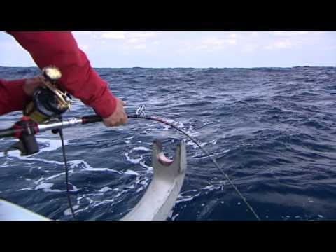 【釣り百景】#066 狙うのは大海に棲む大型魚たち 宮古島・神秘の海