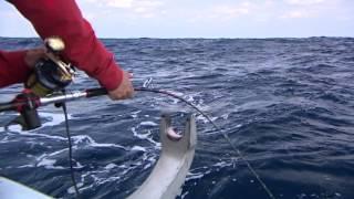#066 狙うのは大海に棲む大型魚たち 宮古島・神秘の海