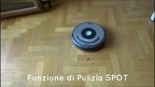 Recensione Roomba 615 - Peli degli animali domestici