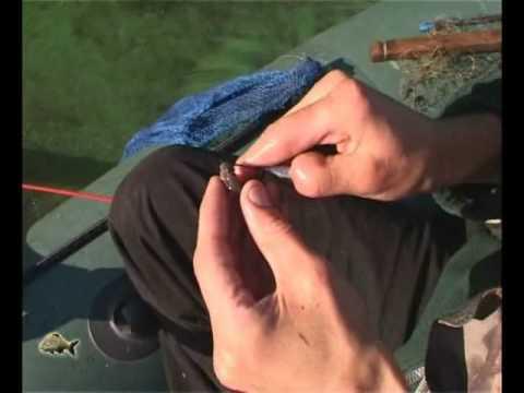 Ловля судака - на живца - YouTube