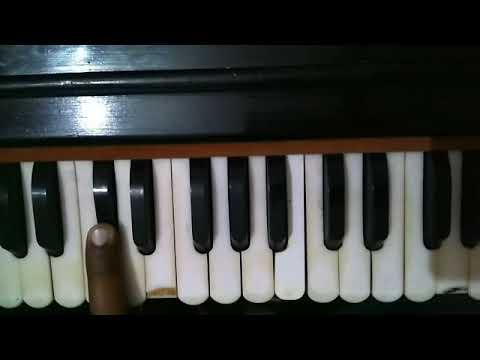 Learn Shabad Mohe Marne Ka Chao Hai On Harmonium For Male Only