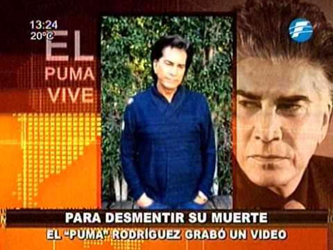 Desarrollar Kakadu abeja  El Puma