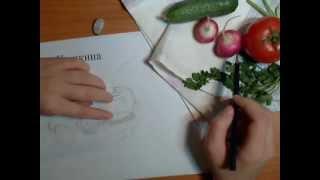 Натюрморт из овощей. Видеоурок Анны Кошкиной.