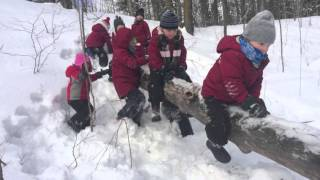 Learning Includes Taking Risks- Secret Forest Playschool