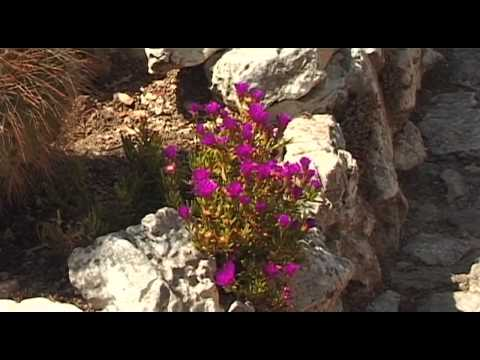 Eze 2015 Travel Video Guide