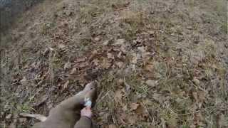 2013 chester county flintlock hunt