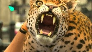 ROBOT LEOPARD Walks The Streets of London! | What