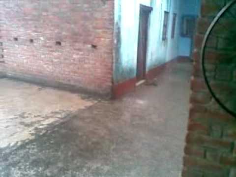 23062010(006)  My House-Kohara Bazar-Daudpur-Chhapara-Bihar-Rain in Angan.mp4