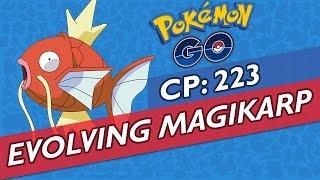 EVOLVING MAGIKARP INTO GYARADOS ★ CP: 223 ★ IV PERFECTION: 98% ★ POKEMON GO