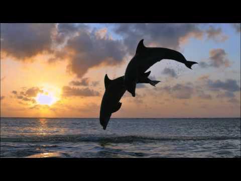 Zahir - Celestial (Dmitri Reign Remix) ♫