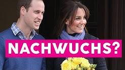 Kate und William: Erwarten die beiden ihr viertes Kind?