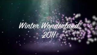 Winter Wonderland 2011