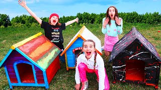 BEST CUSTOMISED DOG HOUSE Wins Mystery Box Prize w/The Norris Nuts