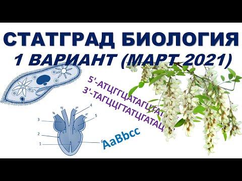 СТАТГРАД БИОЛОГИЯ | 1 вариант | Март 2021