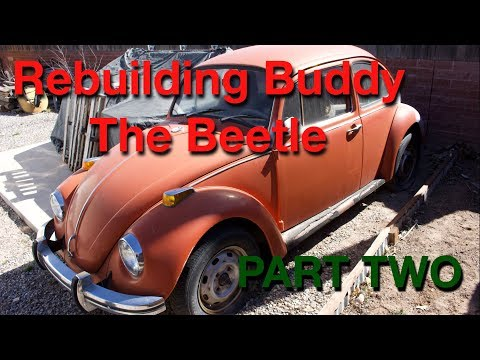 VW restoration | Buddy the Beetle Part Two | Starting the engine tear down and cleaning