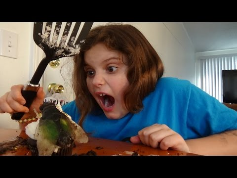 Giant Flies Invade House Spatula Girl Attacks 'Toy Freaks""