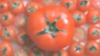 Skinfood - Bộ dưỡng da cà chua Tomato Thumbnail