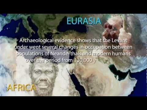 Homo Sapiens - Who Are We? - Chapter Twelve