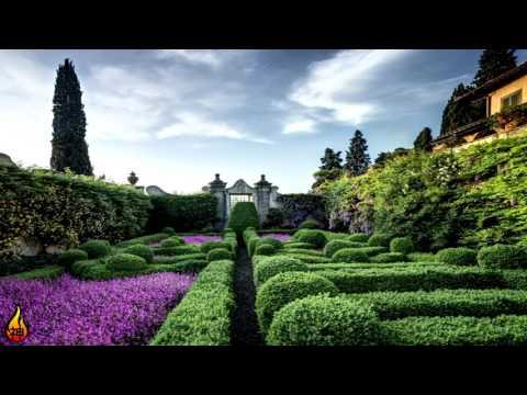 1 Hour Irish Music | Irish Gardens | Celtic Music, Instrumental, Relaxing Music ♫419