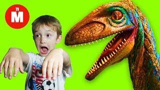 Давид уменьшился!  Гигантский Динозавр преследует David and dinosaurs