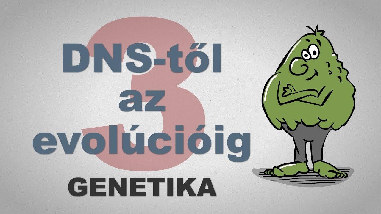 A DNS-től az evolúcióig - csak egyszerűen (3. rész)