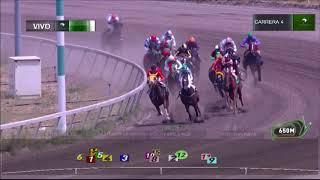 Vidéo de la course PMU PREMIO GRANDE WHITNEY