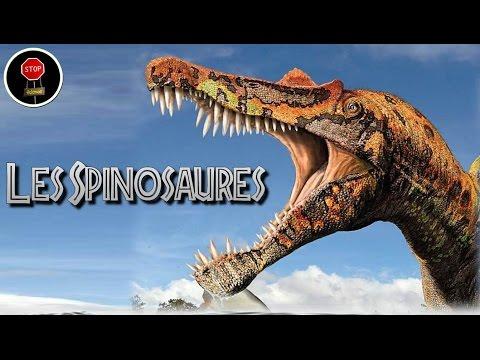 FAQ: Les spinosaures