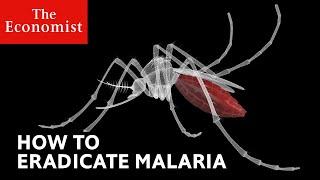 How to defeat malaria | The Economist