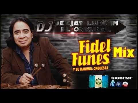 Download Mix Fidel Funes Y Su Marimba Orquesta Vol1 By DJ Ludwin El Original Producer