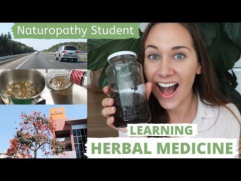 Herbal Medicine Workshop VLOG| Naturopath Herbs | Torrens University Australia