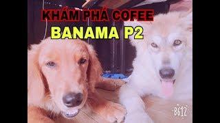 Gambar cover KHÁM PHÁ VÀ THƯỞNG THỨC QUÁN COFEE CÚN ( Banama ) P2 | GTN KID