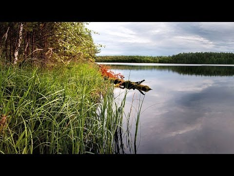 Живые пейзажи, ultra HD 3840x2160 (4k video)