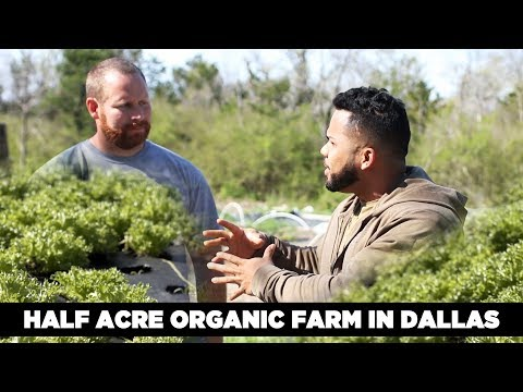 Half Acre Organic Farm in Dallas | The future of farming?