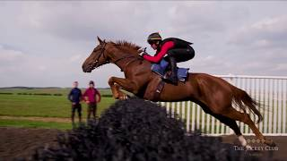 Live to jump | Top Horse Racing | EASYFIX Hurdles & Fences