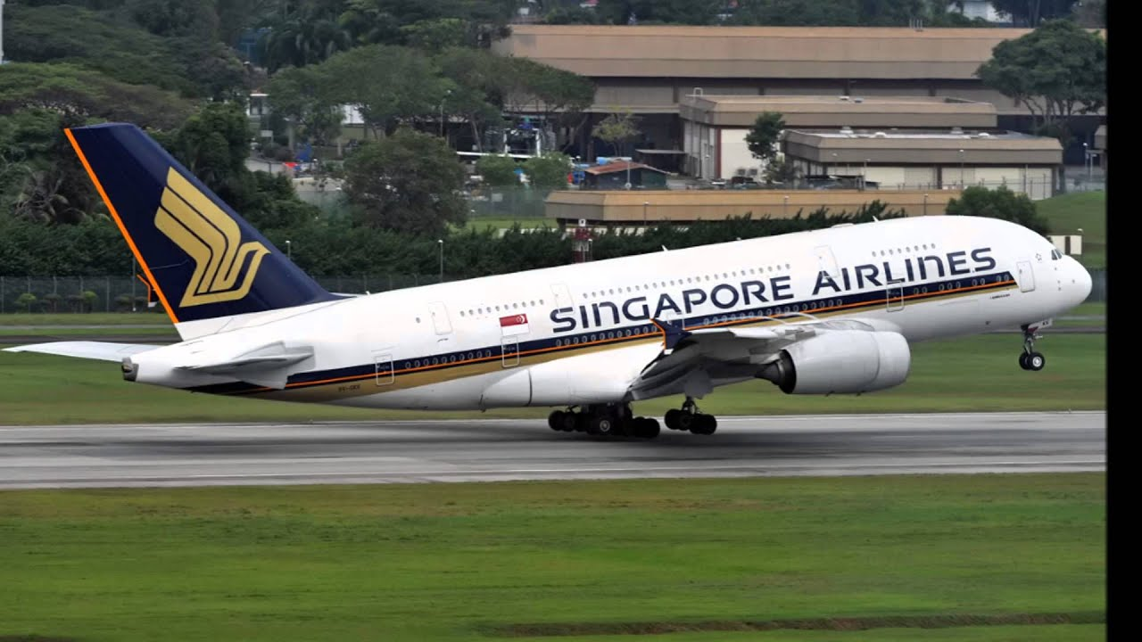 tiger airways singapore essay While its national airline singapore airlines is the 2018 world's best airline singapore ranks 5th on  saw a malayan tiger  's 1993 essay disneyland.