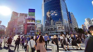 4K Tokyo Guided Tour - Shibuya in the Summer of 2020 - Japan Travel Guide