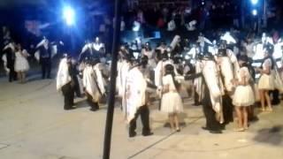 La vivora camada Grande 2015 San Rafael Tepatlaxco