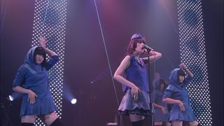 Cover images DAOKO2016 青色主義 TOUR  赤坂BLITZライブ【SPACE SHOWER NEWS】