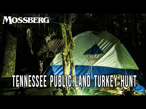 Camping on Public Land | Boat-in Turkey Hunt (Spring Collective – Ep. 02)