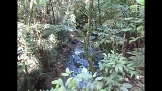 Trilha Nova Friburgo - Boca do Mato