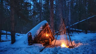 30cm Deep Snow - S๐lo Bushcraft Winter Overnighter, Windy Snowy Conditions, Survival, Extreme Cold