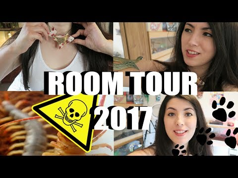 ANIMAL ROOM TOUR | WARNING | VENOMOUS PETS