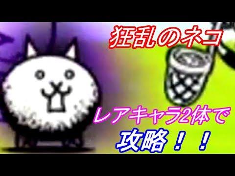 にゃんこ大戦争 狂乱のネコ 2種のレアキャラで攻略!!