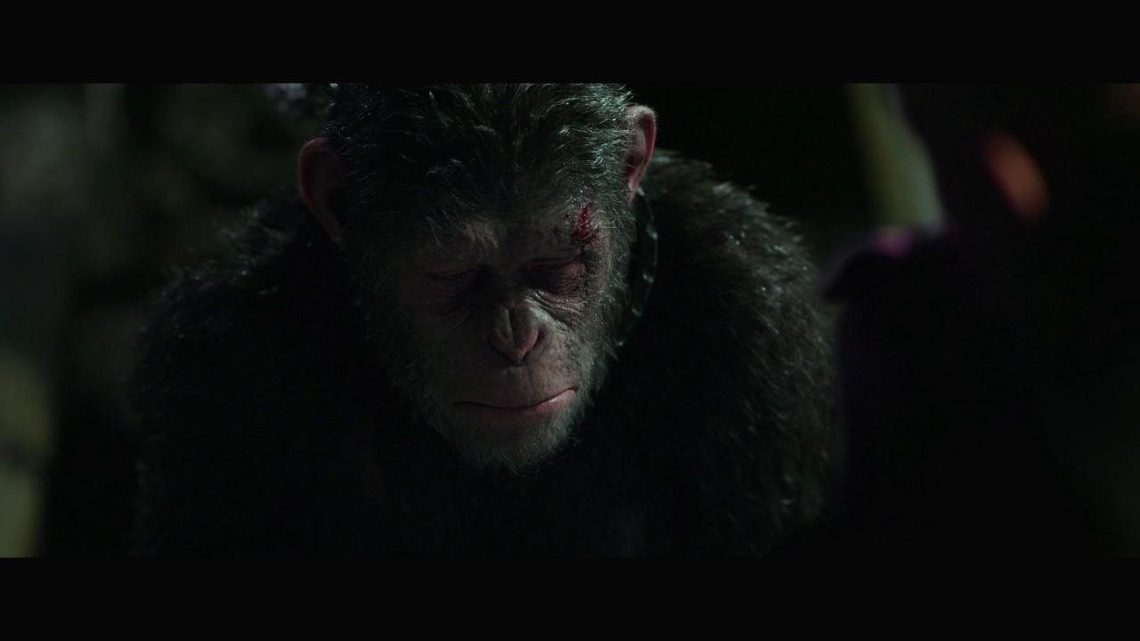 Wojna o planetę małp | Fragment – Przyszedłem po Ciebie [#3] | 2017