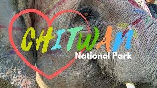 Download Video NATIONAL PARK CHITWAN SAFARI   SAURAHA   SAFARI ELEPHANT RIDE   NEPAL MP3 3GP MP4